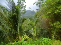 Сейшелы (Seychelles)