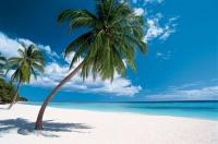 В Доминикане больше российских туристов
