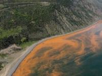 Мраморное море краснеет