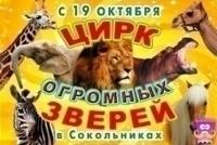 Временный цирк больших животных открылся в Москве