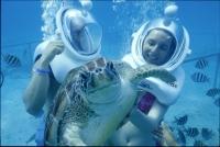 Пешие прогулки под водой стали доступны в Испании