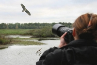 Понаблюдать за птицами предлагает Малага