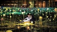 Поле света появится в Эдинбурге