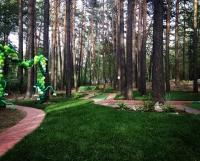 Новосибирский Заельцовский бор будет превращен в красивый пешеходный парк