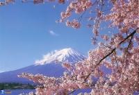 Отдых в Японии: подготовка и особенности