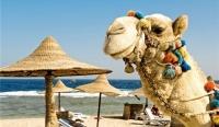 Египет собирается повысить турпоток до 20 млн. человек к 2020 году