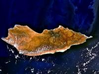 Уникальный остров Сокотра