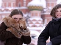 Туризм в России мощнее автомобилестроения