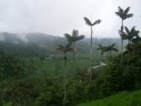Эквадор на одном сайте