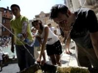 Большая часть Европы страдает от жары