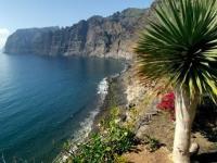 Все больше туристов из России посещает Тенерифе