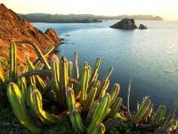 Всё больше туристов из России выбирает для отдыха Мексику