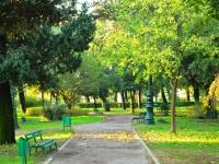 Парк с бесплатным интернетом открылся в Подгорице