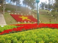 Фестиваль цветов пройдет во Вьетнаме