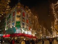 Совсем скоро в Париже включат рождественскую иллюминацию