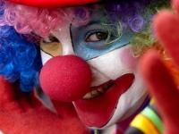 Международный цирковой фестиваль пройдет в Мексике