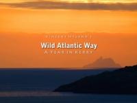 Новый маршрут для любителей прогулок на свежем воздухе создан в Ирландии