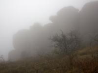 Каталонская провинция приглашает гостей насладиться туманами