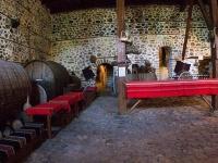 Новый музей вина появился в Болгарии