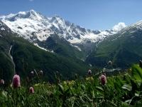Сафари-туры по кавказскому заповеднику