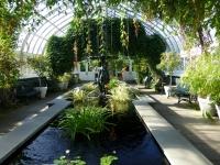 Тропический сад в Нью-Йорке