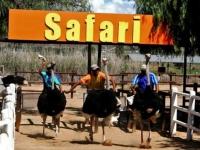 Прокатиться на страусе в ЮАР