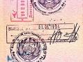 Что такое виза?