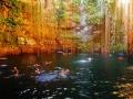 Подводные пещеры Мексики. По сенотам Мексики