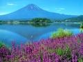 Вулкан Фудзияма может проснуться